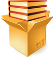 Icon of books in box vector image