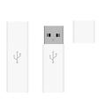 White usb flash drives vector image