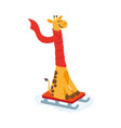 flat cartoon giraffe character sledding vector image