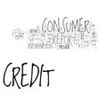 what you should know about consumer credit vector image