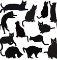 Black cats silhouettes vector image vector image