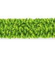 Fresh green leaves line vector image