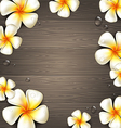 Tropical flowers on a wooden background vector image