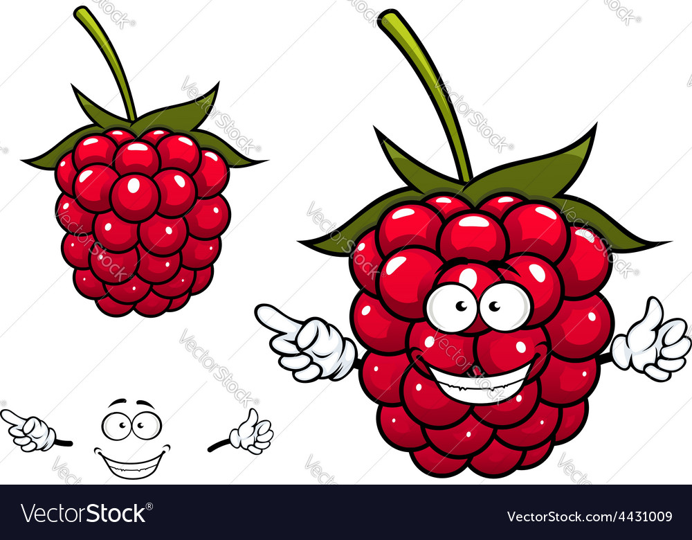 Joyful red raspberry fruit character vector