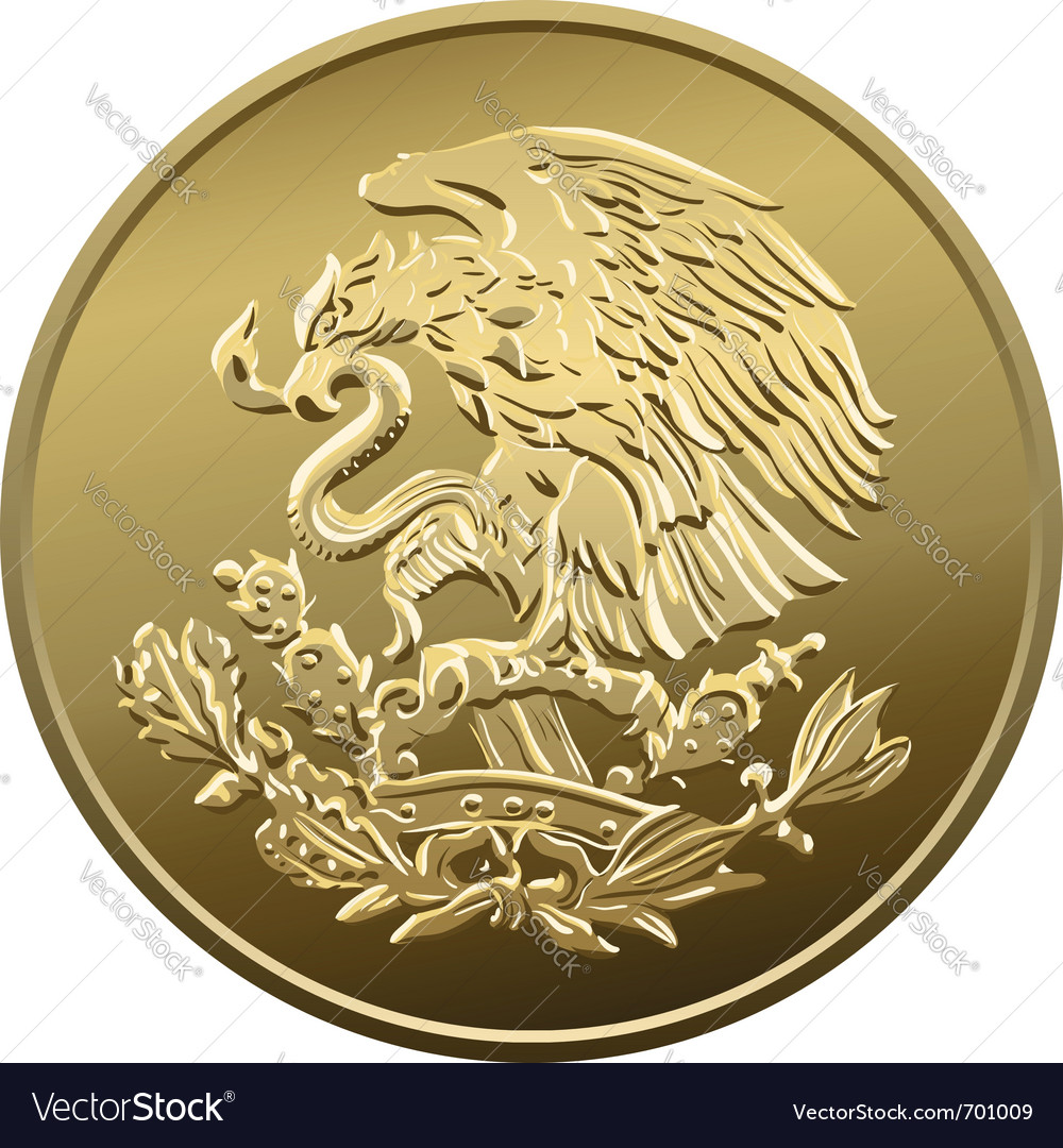 Mexican money vector