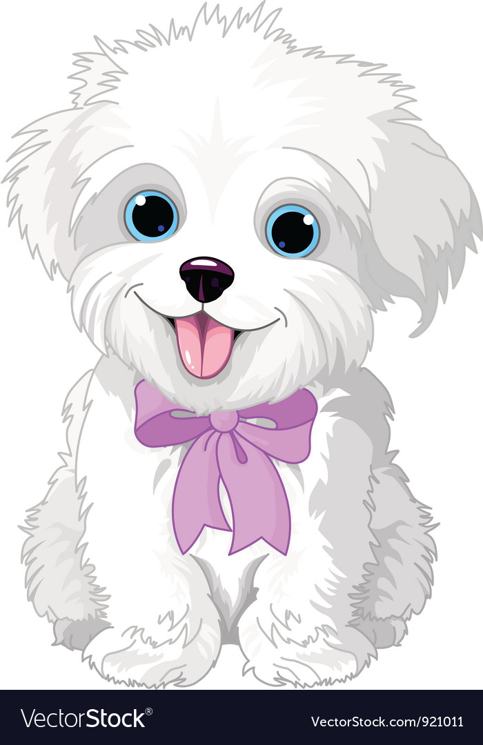 White lapdog vector