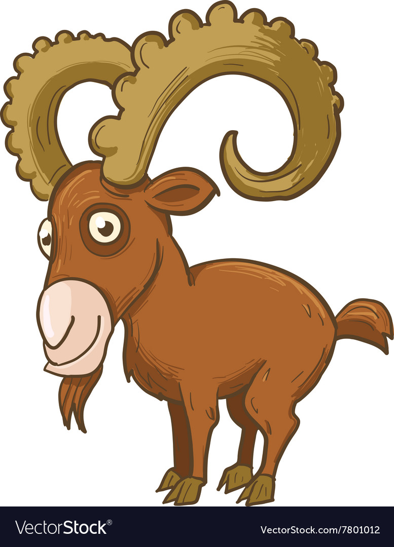 Mountaingoat with horns vector