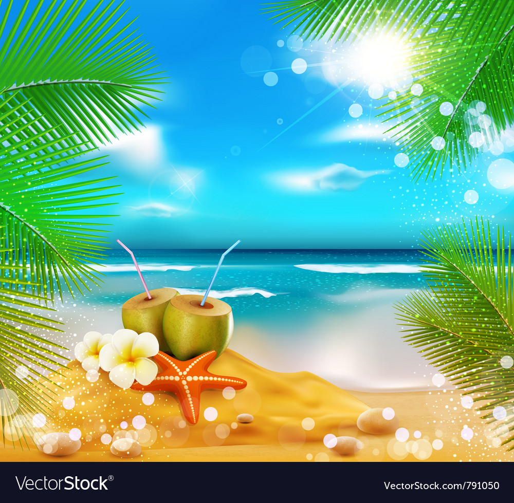 Sea palm trees coconut vector
