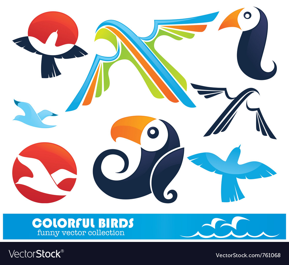 Funny cartoon birds collection vector