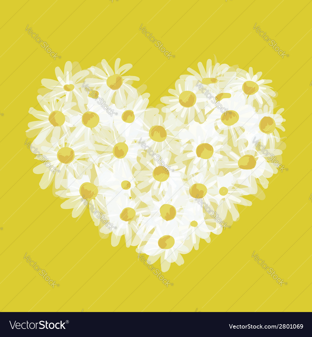 Summer bouquet heart shape made from daisy sketch vector