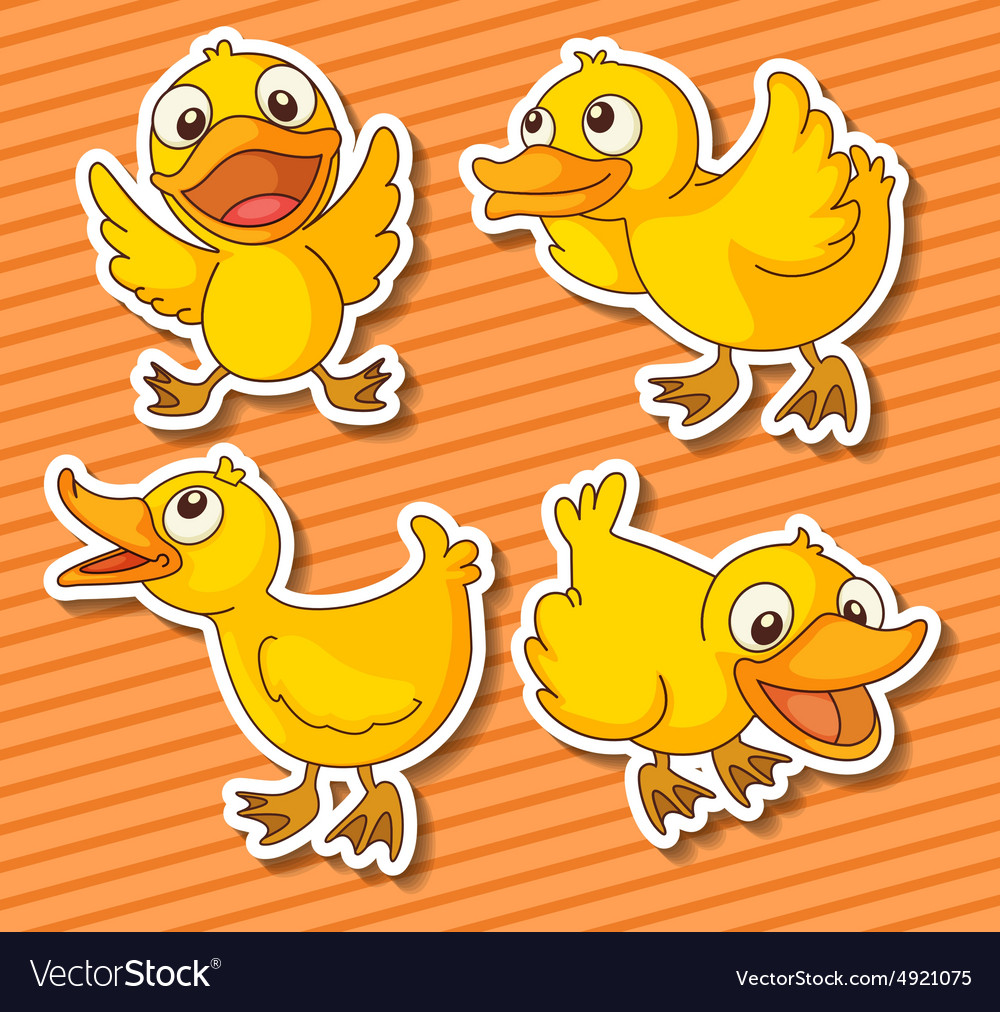 Ducklings vector