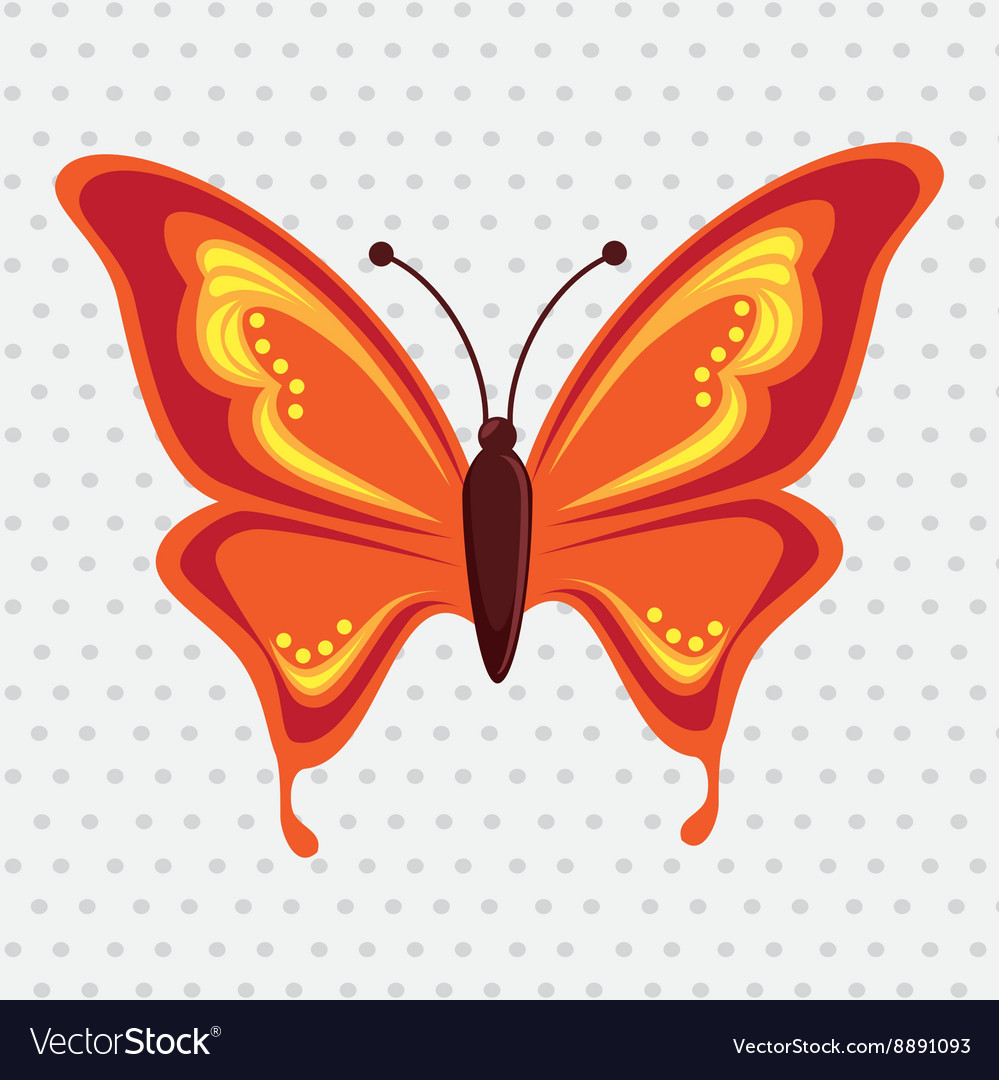 Beautiful butterfly design vector