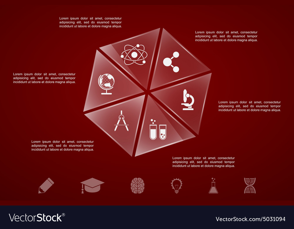 Science education infographic vector