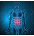 stomach pain vector image vector image