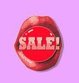 Discount Stickers vector image