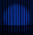 Stage Curtain with Light Spot vector image