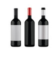 wine bottles on a white background vector image