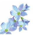 Beautiful Watercolor Blue flowers vector image