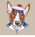 sailor dog BullTerrier breed vector image