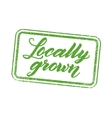 Locally grown stamp with hand drawn lettering vector image