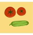 Fresh vegetables on white background Tomato vector image