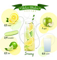 detox water recipe composition vector image