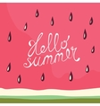Watermelon Hello summer card vector image