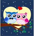 owl couple at tree vector image
