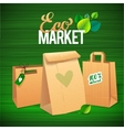 Eco Market Promo Paper bags and leaves on green vector image