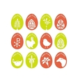 Eggs With Symbols vector image vector image
