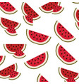white background with pattern of watermelon sliced vector image