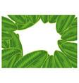 frame green plumeria leaf isolated on white vector image