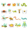 funny cartoon insects and bugs isolated vector image