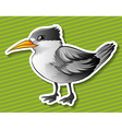 Gray bird vector image vector image