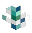 Cubic vector image