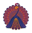 a peacock vector image