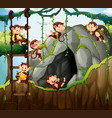 scene with monkeys playing in the cave vector image vector image