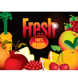 fresh juice vector image