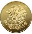 mexican money vector image