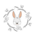 bunny face happy expression in decorative frame of vector image