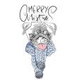 merry christmas handdrawn white and black modern vector image