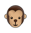 cute baby monkey animal jungle zoo vector image