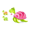 turtle with rss sign on its shell vector image vector image