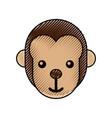 cute baby monkey animal jungle zoo vector image