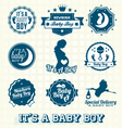 Its a Baby Boy Retro Labels Collection vector image