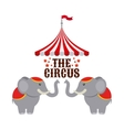 circus elephant show design vector image