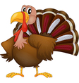 An angry turkey vector image