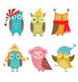 Winter owls vector image vector image