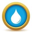 Gold drop icon vector image