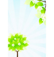 green tree and sun rays in blue sky vector image